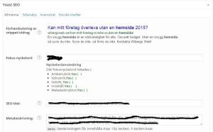SEO optimering för en WordPress hemsida